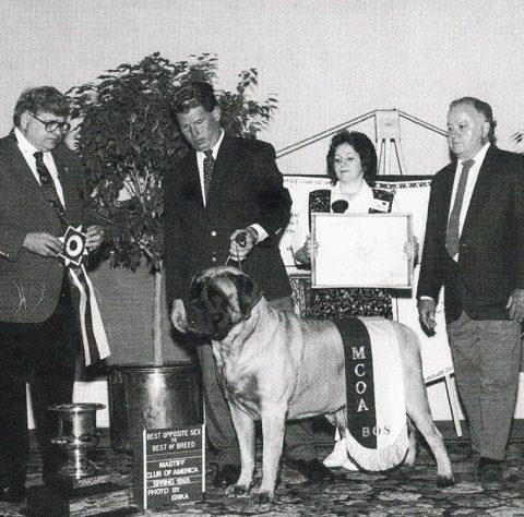 1995BOS